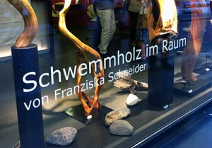 Ramstein Schaufenster, Schwemmholz im Raum, Franziska Schneider