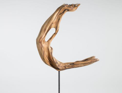 Fundholz zu Skulpturen
